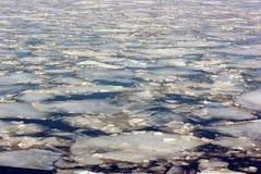Лед на поверхности воды весной во время bre льда Стоковое Фото