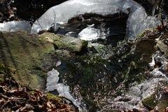 Лед на утесах Стоковые Фотографии RF