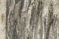 Ледниковая деталь рытвины Стоковое Изображение RF