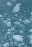Ледниковый конец льда вверх Стоковое Изображение RF