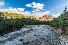 Ледниковый поток в ряде Аляски Стоковое фото RF