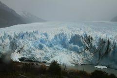 Ледник Аргентина Perrito Moreno Стоковые Изображения RF