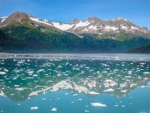 Ледник встречает море Стоковые Изображения RF