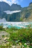 Ледник в много ледников, национальный парк Grinnell ледника, Монтана Стоковая Фотография