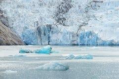 Ледник в плавить фьорде руки Трейси, Аляске Стоковые Фото