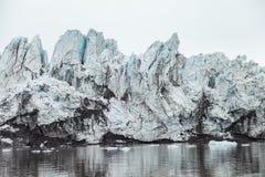 Ледник гор в арктике Стоковое Изображение RF