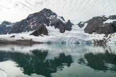 Ледник гор в арктике Стоковые Фотографии RF