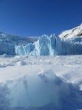 Ледник и айсберг Portage на снеге покрыли вертикаль озера Portage Стоковая Фотография RF