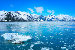 Ледник и красивая природа Аляски стоковые изображения rf