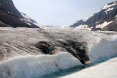 Ледник Колумбии стоковая фотография rf