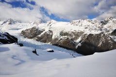 Ледник Новая Зеландия Fox Стоковое Фото