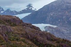 Ледник Патагонии стоковое изображение rf