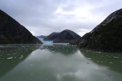 Ледник фьорда руки Трейси стоковые изображения rf