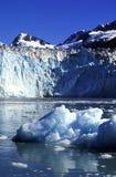ледник Стоковые Изображения RF
