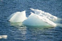 Ледник Amalia - глобальное потепление - образования льда Стоковое Фото