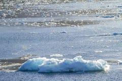 Ледник Amalia - глобальное потепление - образования льда Стоковое Изображение RF