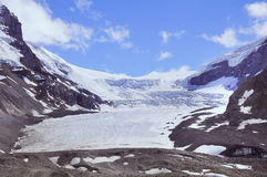 Ледник Athabasca - часть Колумбии Icefield Стоковое Фото