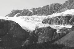 Ледник Crowfoot в бульваре Icefield альбатроса Канада стоковые фото