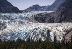 Ледник Davidson в Аляске Стоковое Фото