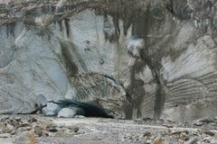 Ледник Morteratsch Стоковая Фотография RF