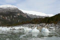 Ледник Pia на архипелаге Огненной Земли стоковые изображения