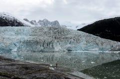 Ледник Pia на архипелаге Огненной Земли стоковая фотография rf
