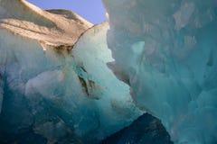 Ледник Reid Стоковое фото RF