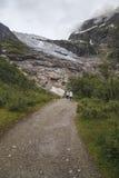Ледник Suphellebreen, Норвегия стоковое фото