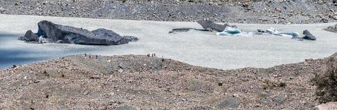 Ледник Tasman Стоковое Изображение