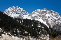 Ледник Thajiwas на Sonamarg, Джамму и Кашмир, Индии Стоковое фото RF