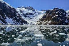Ледник Tidewater в национальном парке фьордов Kenai, AK Стоковые Изображения RF