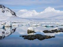 Ледовитый ландшафт - лед, море, горы, ледники - Шпицберген, Свальбард Стоковые Фото