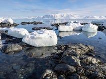 Ледовитый ландшафт - лед, море, горы, ледники - Шпицберген, Свальбард Стоковые Изображения