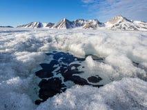 Ледовитый ландшафт ледника - Свальбард Стоковое Изображение