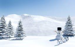 Ледовитый ландшафт, поле снега с снеговиком и птицы в празднике рождества, северный полюс пингвина Стоковое Фото