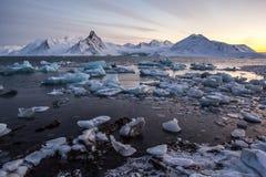 Ледовитый лед в фьорде Стоковые Изображения