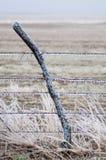 Лед покрыл столб и провод загородки Стоковое Изображение