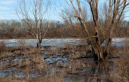 Лед реки весной в дне Стоковое Фото