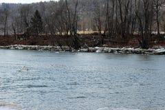 Лед реки Стоковые Изображения RF
