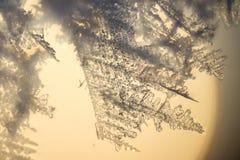Ледяной кристалл. Стоковые Изображения RF