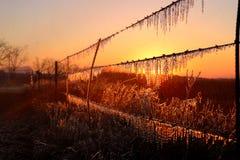 Лед-Olation Стоковая Фотография RF