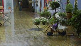 Ливень в малом историческом торговом участоке с цветочными горшками Стоковое Фото