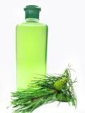 ливень геля ели выдержки бутылки Стоковые Фото