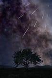 Ливень звезды Стоковые Изображения