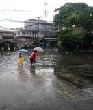 Ливень шторма влияемого на тайфуном стоковые фотографии rf