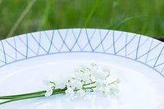 Лилии долины на белой плите меню против детенышей весны цветка принципиальной схемы предпосылки белых желтых Стоковая Фотография RF