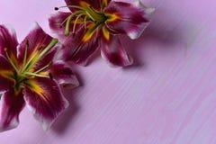 Лилии на таблице Стоковые Фотографии RF