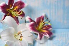 Лилии на таблице Стоковые Фото