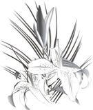 лилии Стоковое Изображение RF