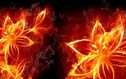 лилия пожара Стоковое Фото